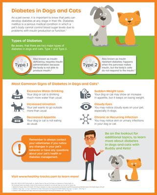 NICO-4497 Education Diabetes Dogs Cats