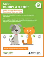 Blood Glucose Monitoring and Test Sites Diabetes In Dogs and Cats
